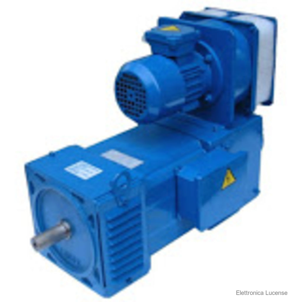 Elettronica Lucense Alfamotori Km250m Direct Current Motor